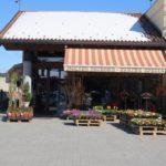 Molino Peirone Boves-farine speciali-vista negozio